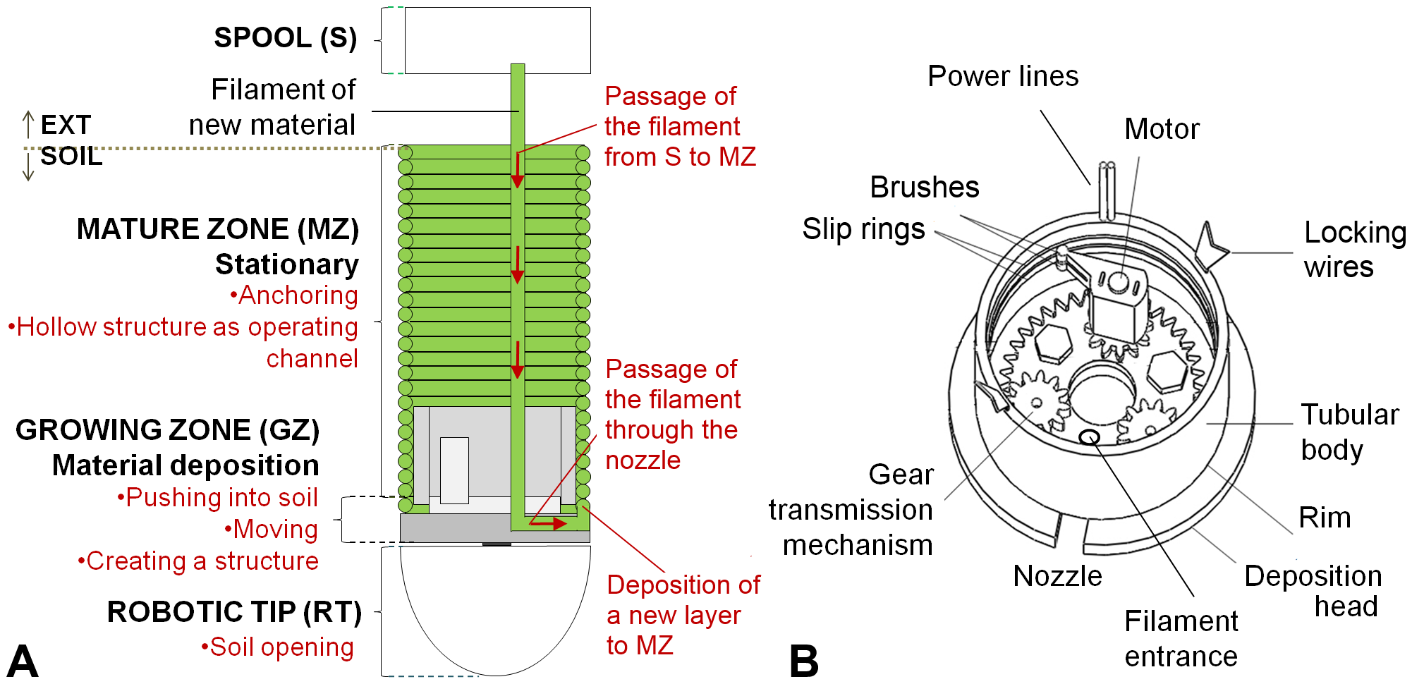 Design of root-like soil penetration device from Figure 3 of Sadeghi A. et al. PLoS ONE 9(2): e90139.