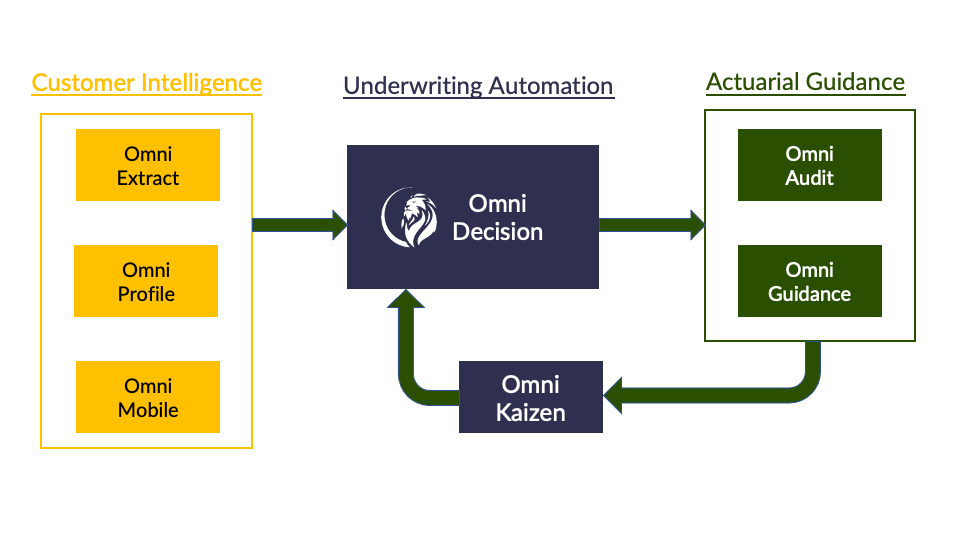 Customer Intelligence and Underwriting Automation data visualization.